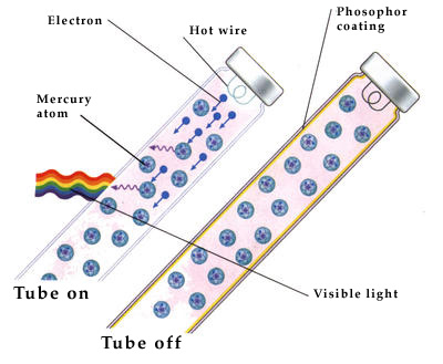 How Does A Fluorescent Tube Work