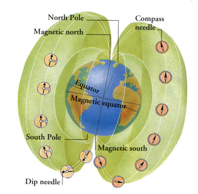 Compass needle lines up with the magnetic field so it always points