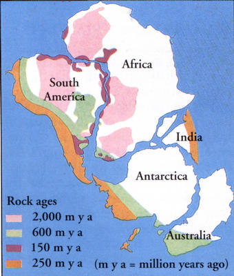 Were the continents once joined together the continents can be fitted together like the pieces of a jigsaw puzzle so that gumiabroncs Choice Image
